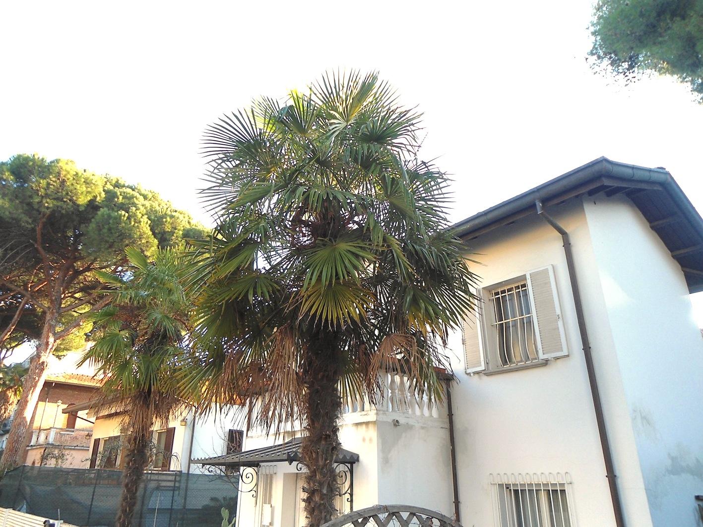RICCIONE ABISSINIA, villa unifamiliare in vendita con giardino